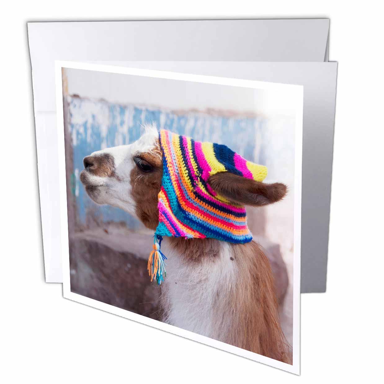 3dRose Peru, llama in a village - SA17 JRI0005 - Jutta Riegel, Greeting Cards, 6 x 6 inches, set of 12