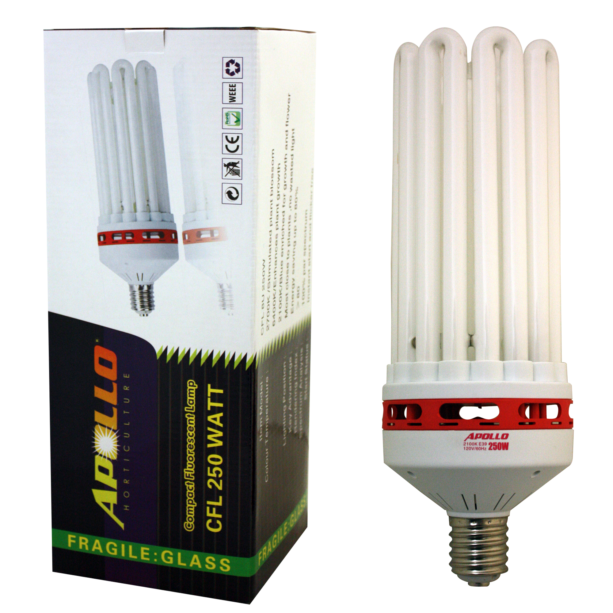 Apollo Horticulture 250 Watt CFL Compact Fluorescent Grow Light Bulb of 6400K for Plant Growing