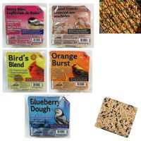 5 Pack Heath Outdoor Products All Season Suet Cake Wild Bird Food Treat 11.25 oz