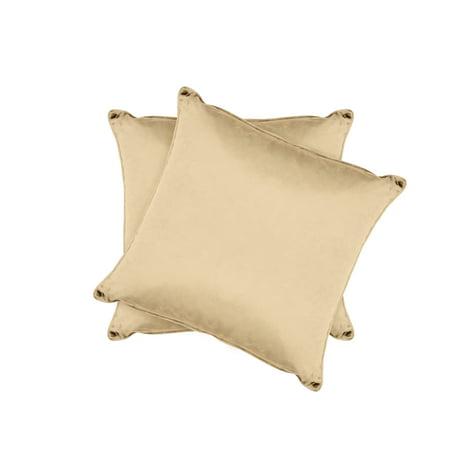 Jean Pierre Lucas Velvet 2-Piece Decorative Pillow Set