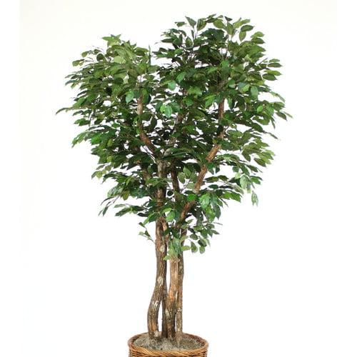 Distinctive Designs Canopy Ficus Tree in Planter