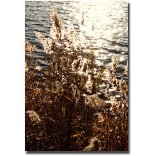"Trademark Fine Art ""Landscape II"" Canvas Wall Art by Ariane Moshayedi"