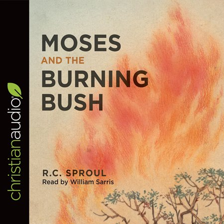 Moses and the Burning Bush (Moses And The Burning Bush Story For Kids)