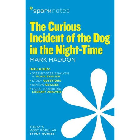 the curious incident of the dog in the night time essay