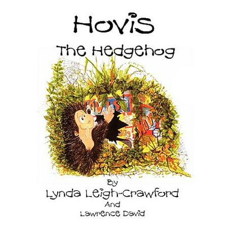 Hovis the Hedgehog : Bonfire Night](Autumn Halloween Bonfire Night)
