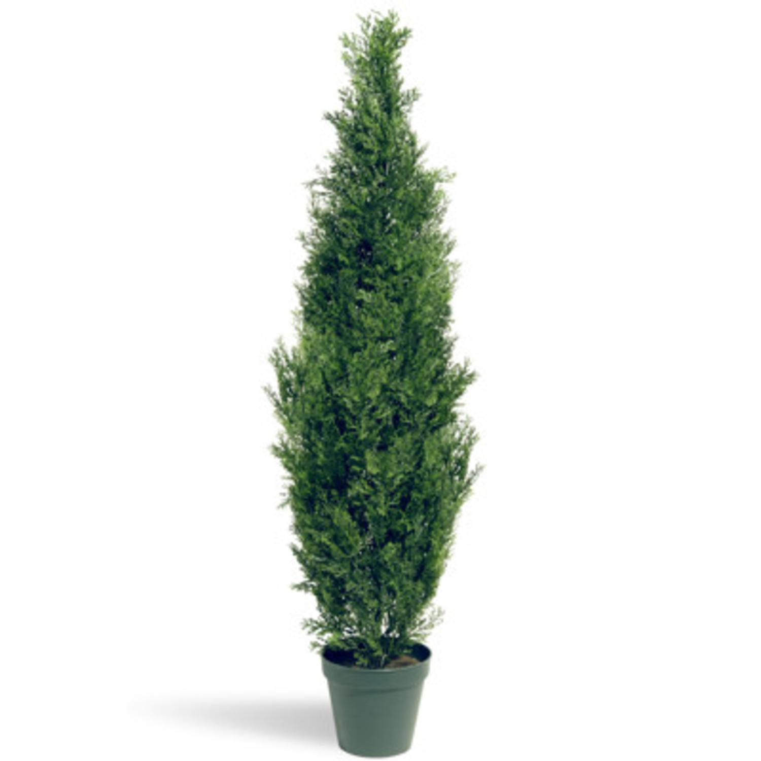 """60"""" Potted Artificial Arborvitae Topiary Tree"""