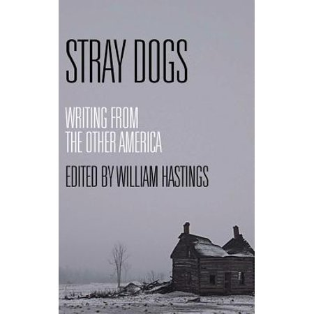 Stray Dogs: Writing from the Other America by