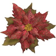 Sizzix Bigz Die w/Texture Fades Layered Tattered Poinsettia by Tim Holtz