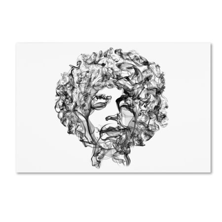 Hendrix Art (Trademark Fine Art 'Jimi Hendrix' Canvas Art by Octavian)