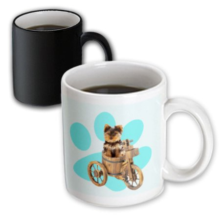 3dRose Teacup yorkie on bike. Blue, paw, puppy, animal. - Magic Transforming Mug, (Best Food For Teacup Yorkie)