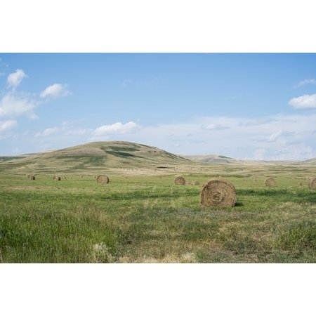 Framed Art for Your Wall Hay Country Sky Rural Blue Bales Fields Grass 10x13 Frame](Hay Bale Decorations For Halloween)