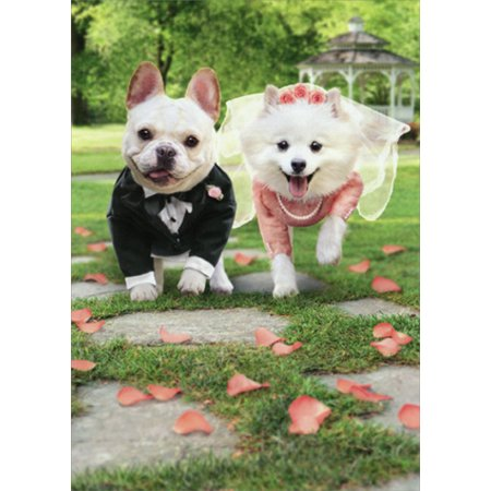 Avanti Press Bride And Groom Dogs Running Funny Wedding Card for $<!---->