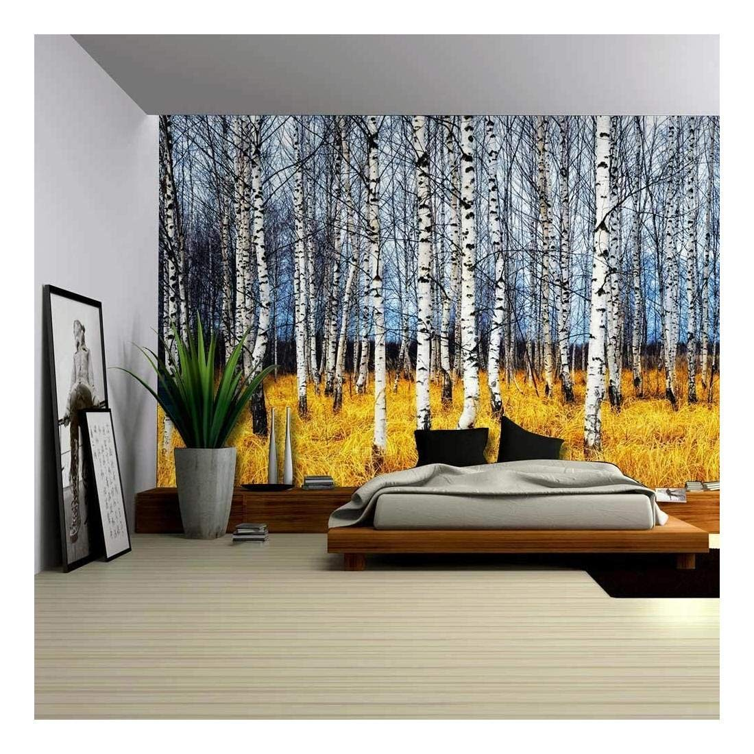 wall26 - Landscape Mural of a Birch Tree Forest - Wall Mural, Removable Sticker, Home Decor - 66x96 inches