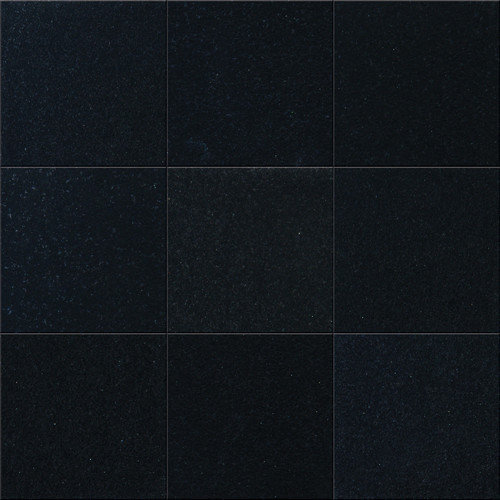 MS International 4'' x 4'' Polished Granite Tile in Black Granite (Set of 4)