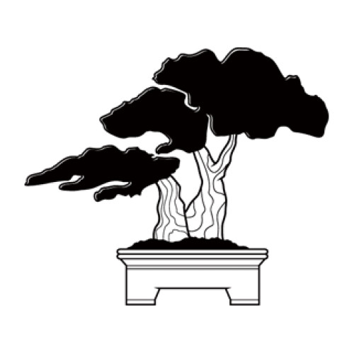 Style and Apply Bonsai Wall Decal