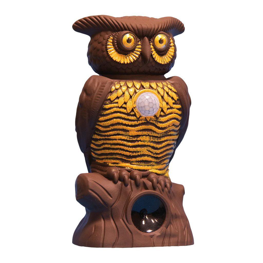 As Seen On Tv Owl Alert