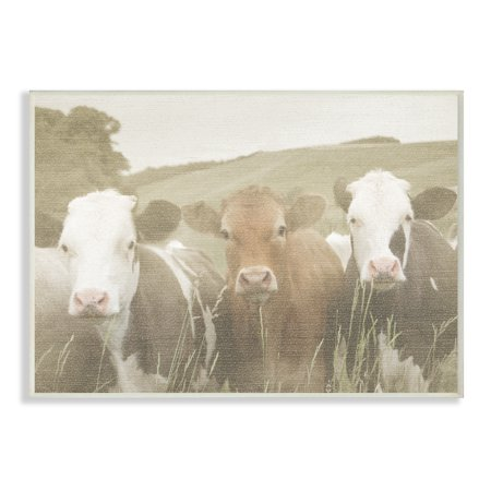 Cow Decor - The Stupell Home Decor Collection Happy Neighbors Cows in the Field Wall Plaque Art, 10 x 0.5 x 15