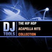 Hip Hop Acapella Hits Collection (CD)
