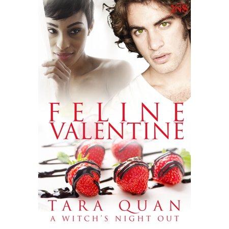 Feline Valentine (1Night Stand series) - eBook