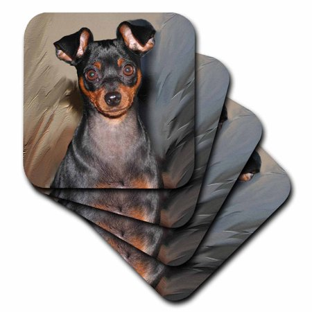 3dRose Miniature Pinscher, Soft Coasters, set of 4