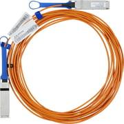 Mellanox Fiber Optic Network Cable - 10 ft