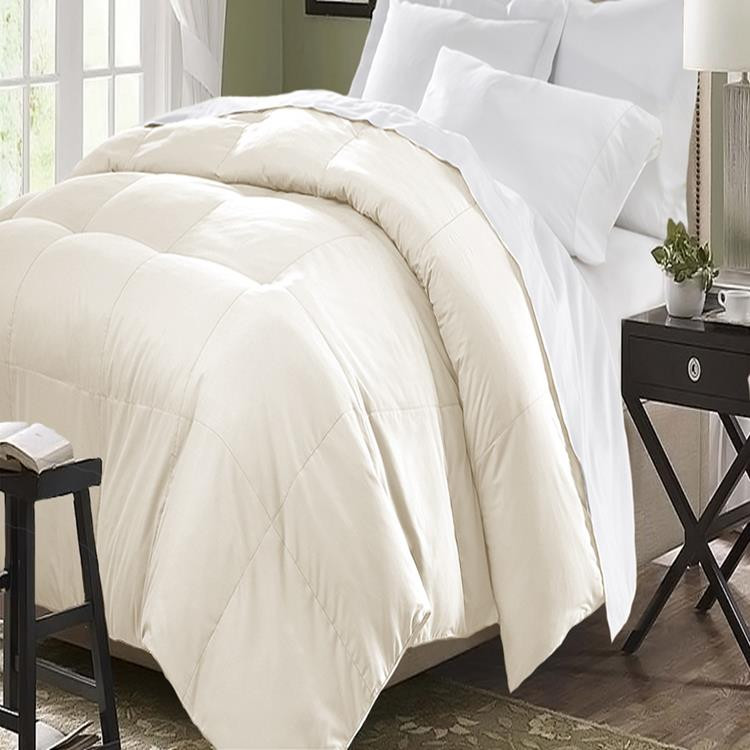 Blue Ridge Home Fashions Polyester Down Alternative Comforter