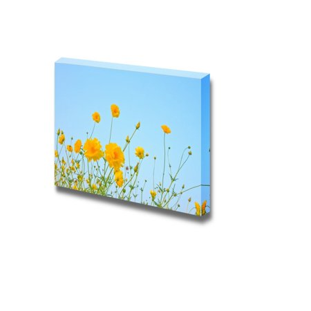 Wall26 - Canvas Prints Wall Art - The Cosmos Flower on Blue Sky Background | Modern Wall Decor/ Home Decoration Stretched Gallery Canvas Wrap Giclee Print. Ready to Hang - - Blue Sky Decor