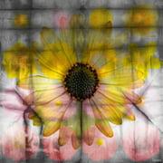 Parvez Taj Sunflower Art Print on Premium Canvas