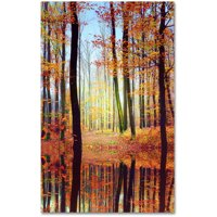 "Trademark Fine Art ""Fall Mirror"" Canvas Art by Philippe Sainte-Laudy"