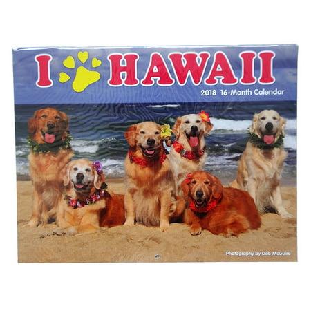 I Paw Hawaii Dog 2018 16 Month Trade Calendar
