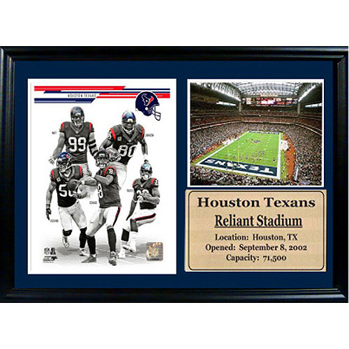 NFL Houston Texans Photo Stat Frame, 12x18