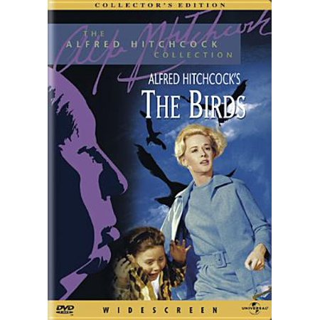 Bird Movie For Kids (The Birds (Collector's)