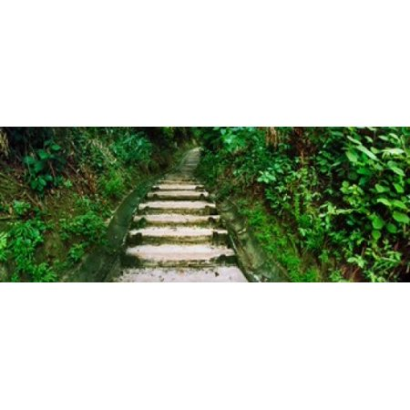 Steps leading to a lighthouse Morro De Sao Paulo Tinhare Cairu Bahia Brazil Stretched Canvas - Panoramic Images (15 x 6)
