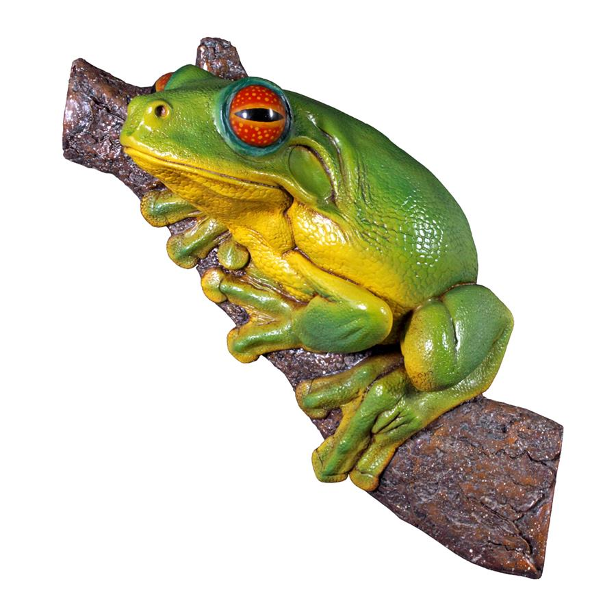 Red-Eyed Tree Frog Statue