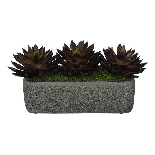 House of Silk Flowers Inc. Artificial Pointed Desktop Echeveria Plant in Decorative Vase