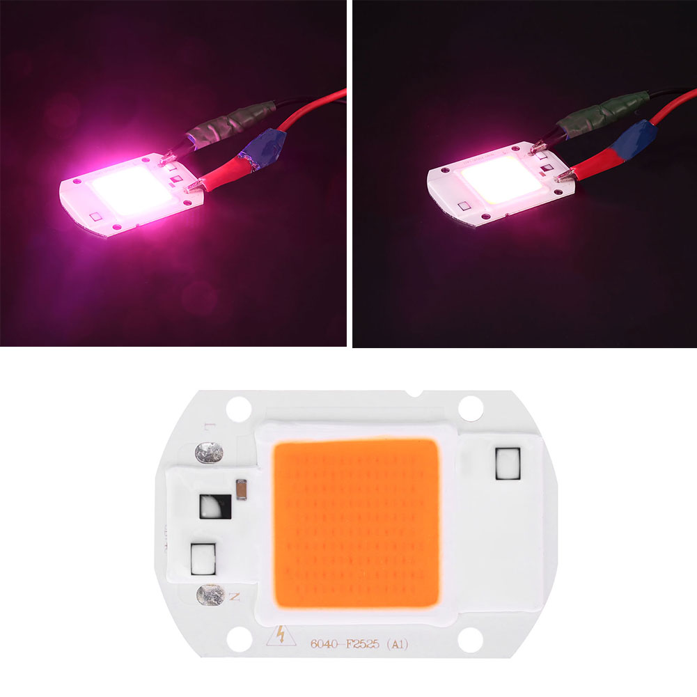 Purple and Pink COB Chip LED for Plant Growing Light 50000H AC220V Plants 20W