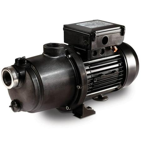 Pentair LA-MS05 Boost Rite 1.1 HP Booster and Pressure Side Cleaner Pool Pump