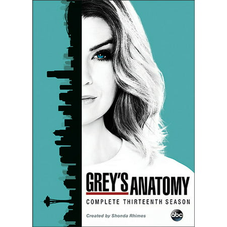 Grey's Anatomy: The Complete Thirteenth Season for $<!---->