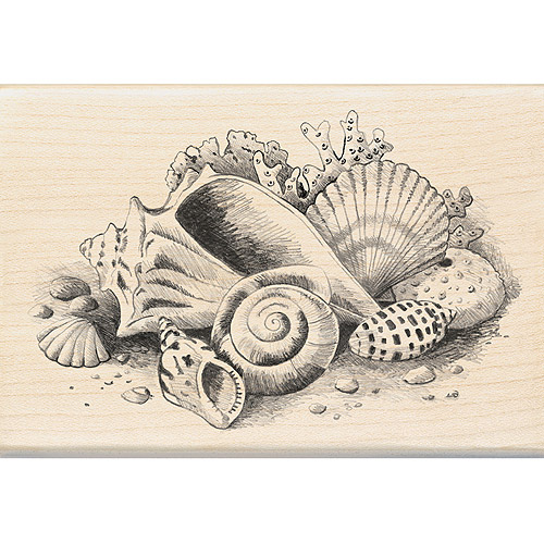 "Inkadinkado Mounted Rubber Stamp, Seashells Still Life 2.75"" x 4"""