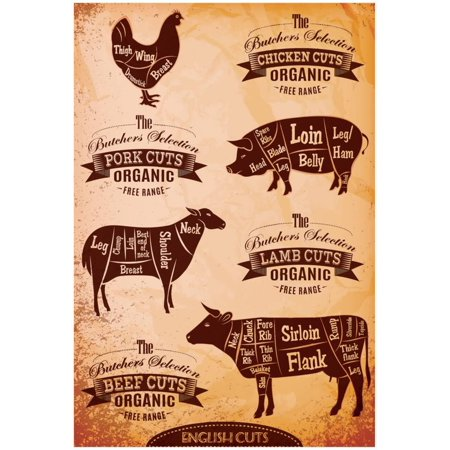 Diagram Of Cut Carcasses Chicken, Pig, Cow, Lamb Poster - 13x19 (Chicken Diagram)