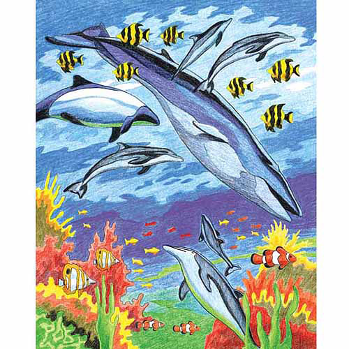 "Colour Pencil By Number Kit 8-3/4""X11-3/4""-Sea Animals"