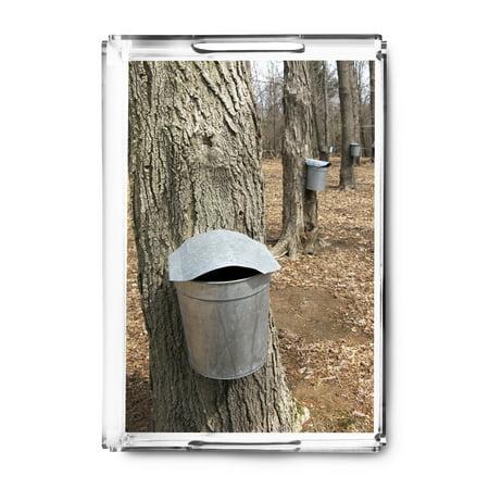 Maple Tree Sap Buckets   Lantern Press Photography  Acrylic Serving Tray