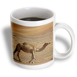 3dRose The wind molds the sand into beautiful dunes, offering a unique natural paradise 3, Ceramic Mug, -