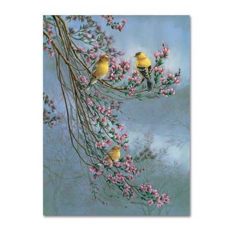 Trademark Fine Art 'Gold Finches' Canvas Art by Wanda Mumm
