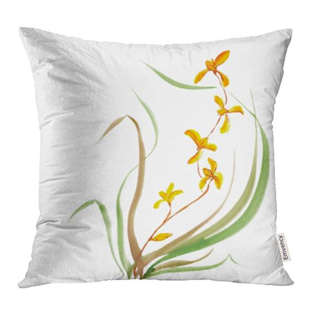 CMFUN Green Botanical Orchid in Gouache Chinese Painting White Artist Artistic Asian Pillowcase Cushion Cases 16x16 (China Orchid)