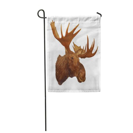 Moose Trophy Antler - LADDKE Taxidermy Moose Head Antler Isolated on White Background Trophy Garden Flag Decorative Flag House Banner 12x18 inch
