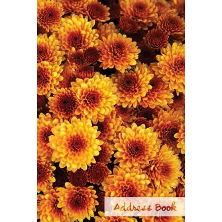Address Book.: Glossy and Soft Cover, Large Print, Font, 6