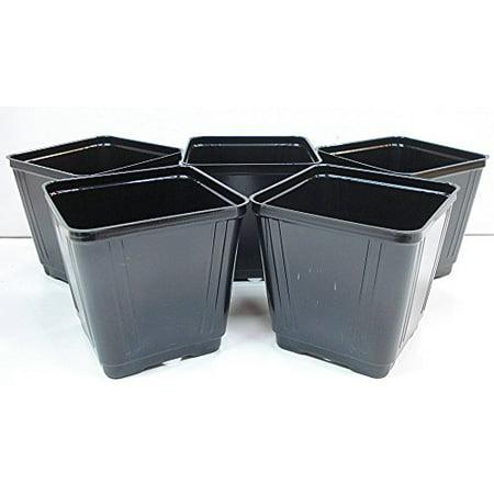 Black Plastic Starter Pot for Plants 3.5