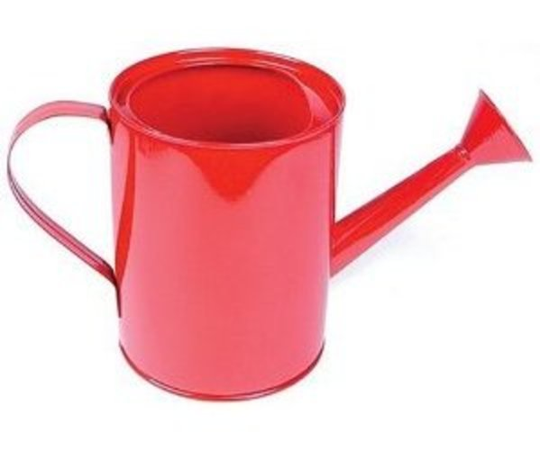 Small Metal Watering Can (Colors May Vary) by Toysmith