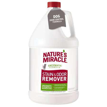 Orange Cat Odor Remover (Nature's Miracle Stain and Odor Remover for Dogs, 1 Gallon)
